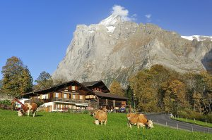 Hüttenurlaub im Berner Oberland