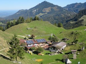 Wanderung auf das Kranzhorn (1368 m) von Windshausen